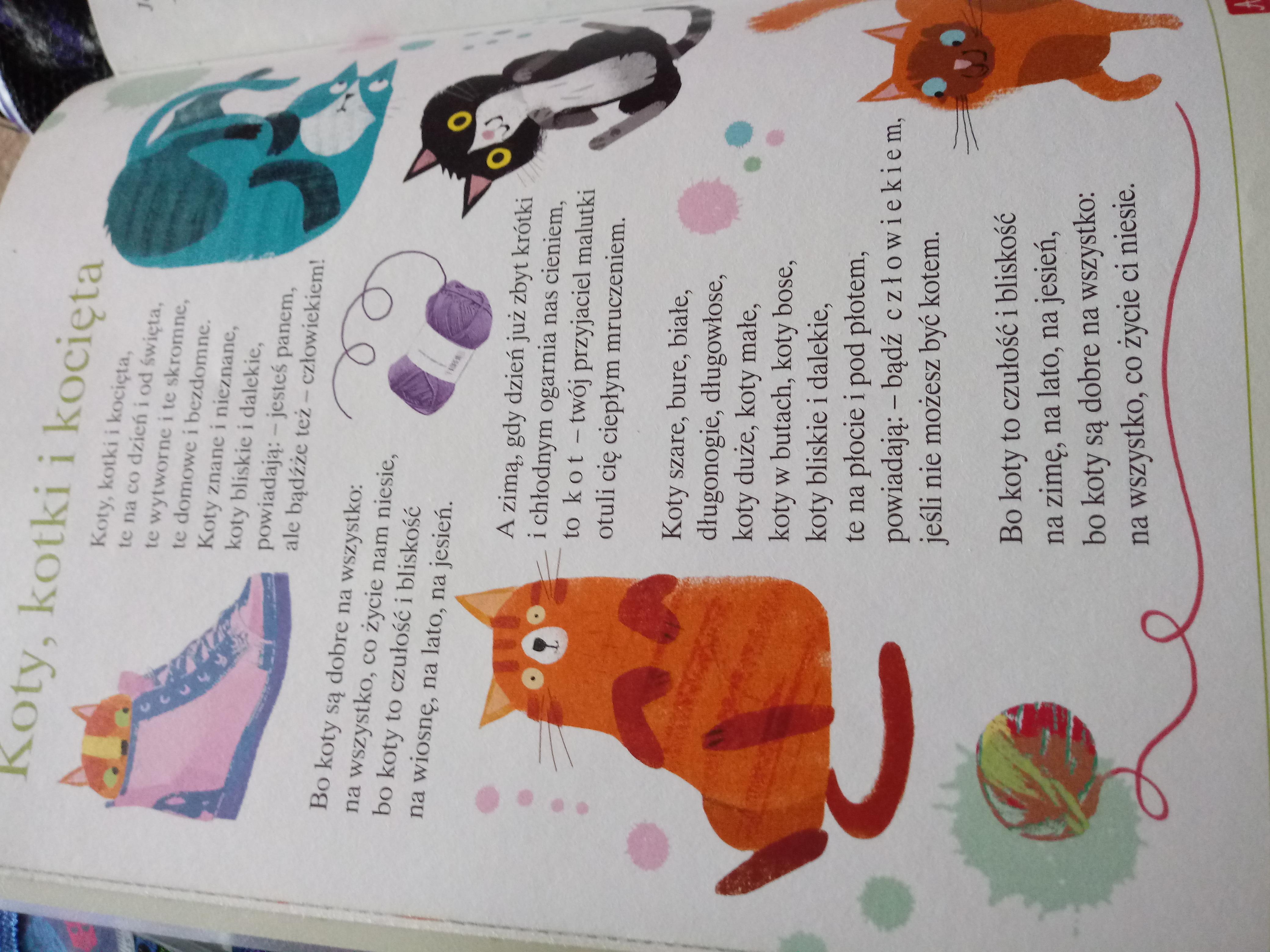Wypisz 4 Przyklady Rymow Z Wiersza Koty Kotki I Kocieta