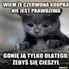 KonraDXMiSZczU