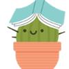 Kaktusek223