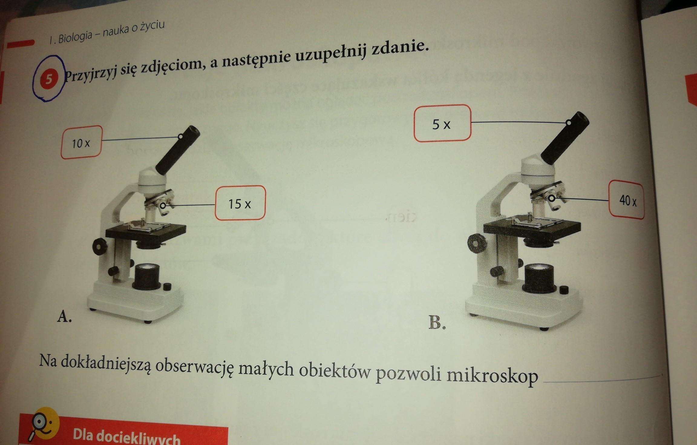 Mikroskop elektronowy biologia: elektronowy małych intestinum tenue