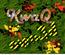 KwaQ123