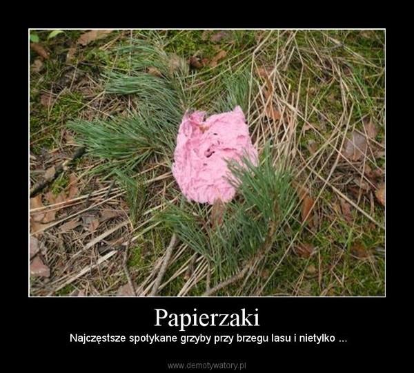 kto wie co to są za grzyby o nazwie papierzaki ?? :))) :D