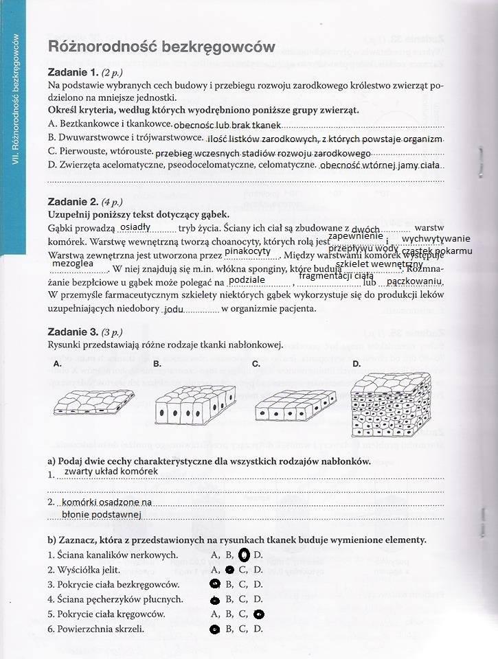 testy maturalne biologia online