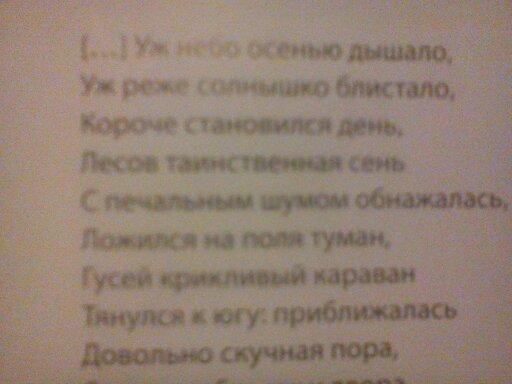 Rosyjskie Wierszyki Ru43 Scotthumane