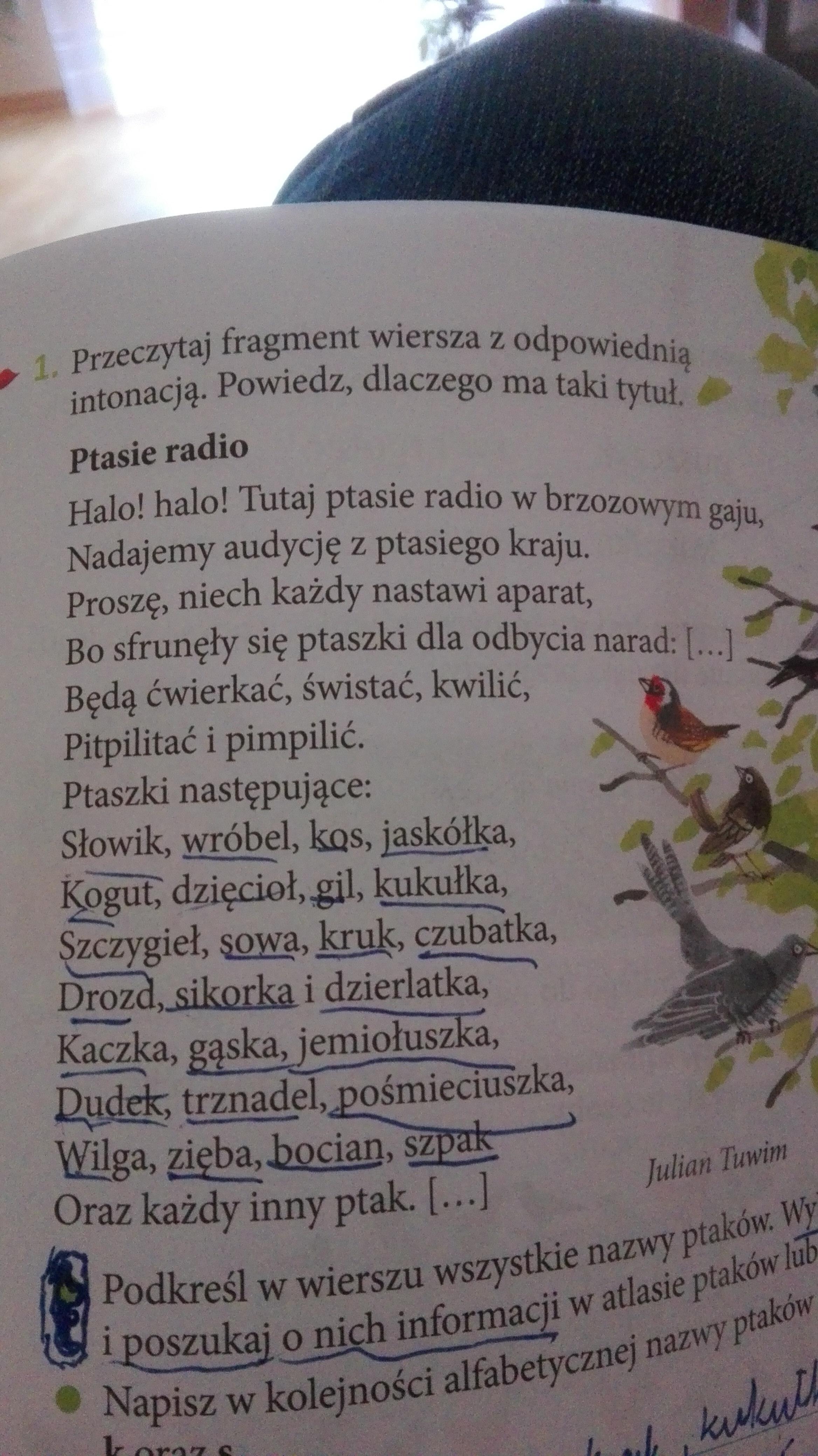 Otocz Pętlą W Wierszu Ptasie Radio Dwa Nowo Utworzone
