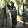 kamil200613