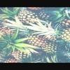 Ananasek20