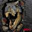 Oski011